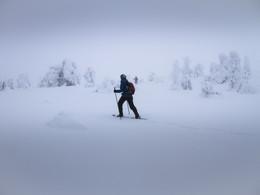 snow-shoe-trek-2733211_1920.jpg