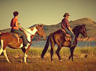 Équitation parc régional des Iles