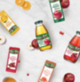 樹頂純果汁系列