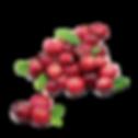 樹頂100%蔓越莓綜合果汁