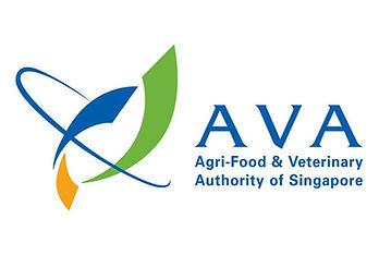 AVA_1024x1024.jpg
