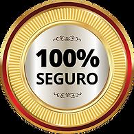 Sello100seguro2.png