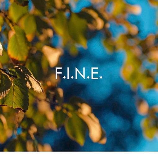 F.I.N.E. Cover Art.jpg