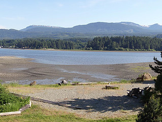 Mindfulness in the Natural World - Summer Weekend Workshop - Aug. 12 & 13, 9am-4pm in Ladysmith