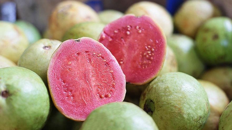 Guava Tropic Pink