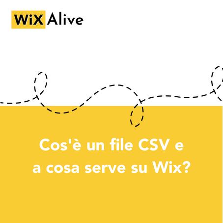 Cos'è il file CSV?