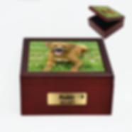Personalised-Pet-Ashes-Memorial-Box-Larg