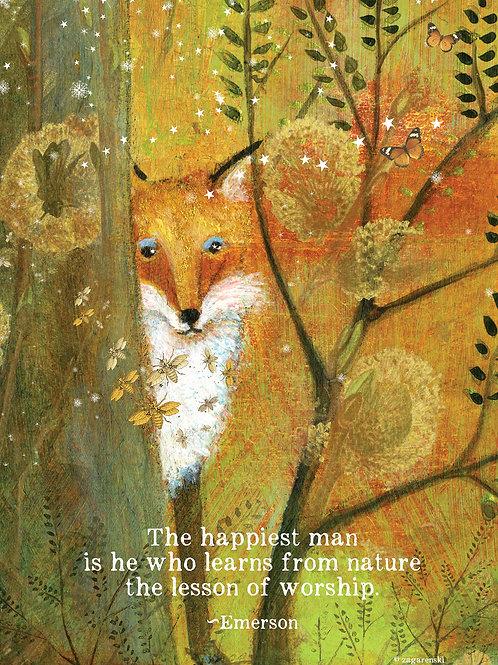 423 Happiest Man (Fox)