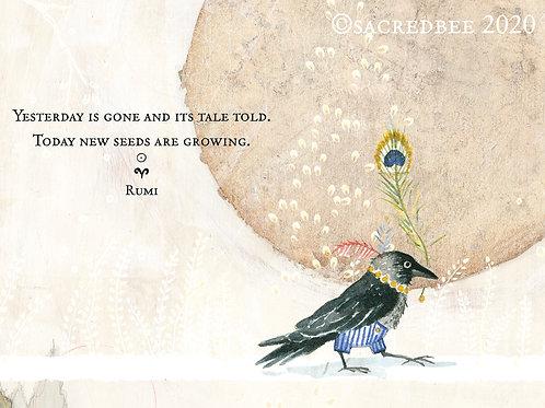 539 Sacredbee Greeting Card New Seeds