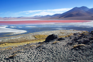 Laguna Colorada, Northern Chile - 2017