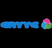 GRYYC logo orizontio diafano 2.png