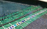 American made Lightstreams Glass Tile pool tile, waterline tile, and spa tile in Renaissance Collection Celadon green tile and Jewel Inlays as accent tile and step marker tile