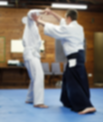 Beginners Classes - Aikido Sydney lower north shore