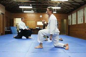 Adults Classes - Aikido Sydney lower north shore