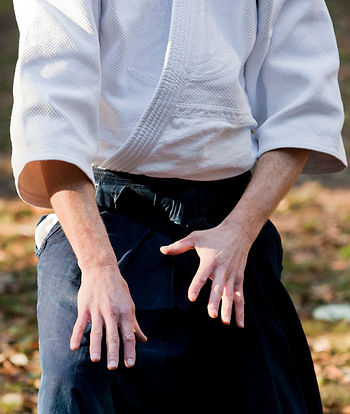 Meditation and Ki Energy Cultivation - Aikido Sydney lower north shore