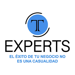 GM Consulting (T Experts)