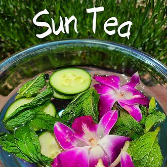 Sun Tea.png