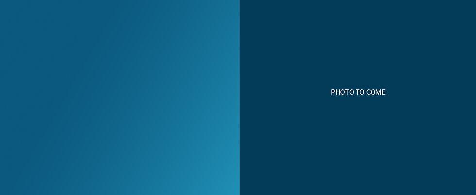 BlueFrog Case Study Graphic FPO.jpg