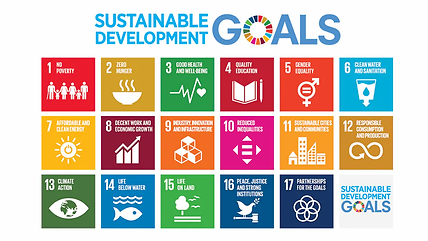 Sustainable goals .webp