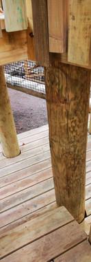 Plataformas bosque