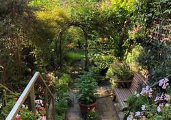Harvey's Back Garden