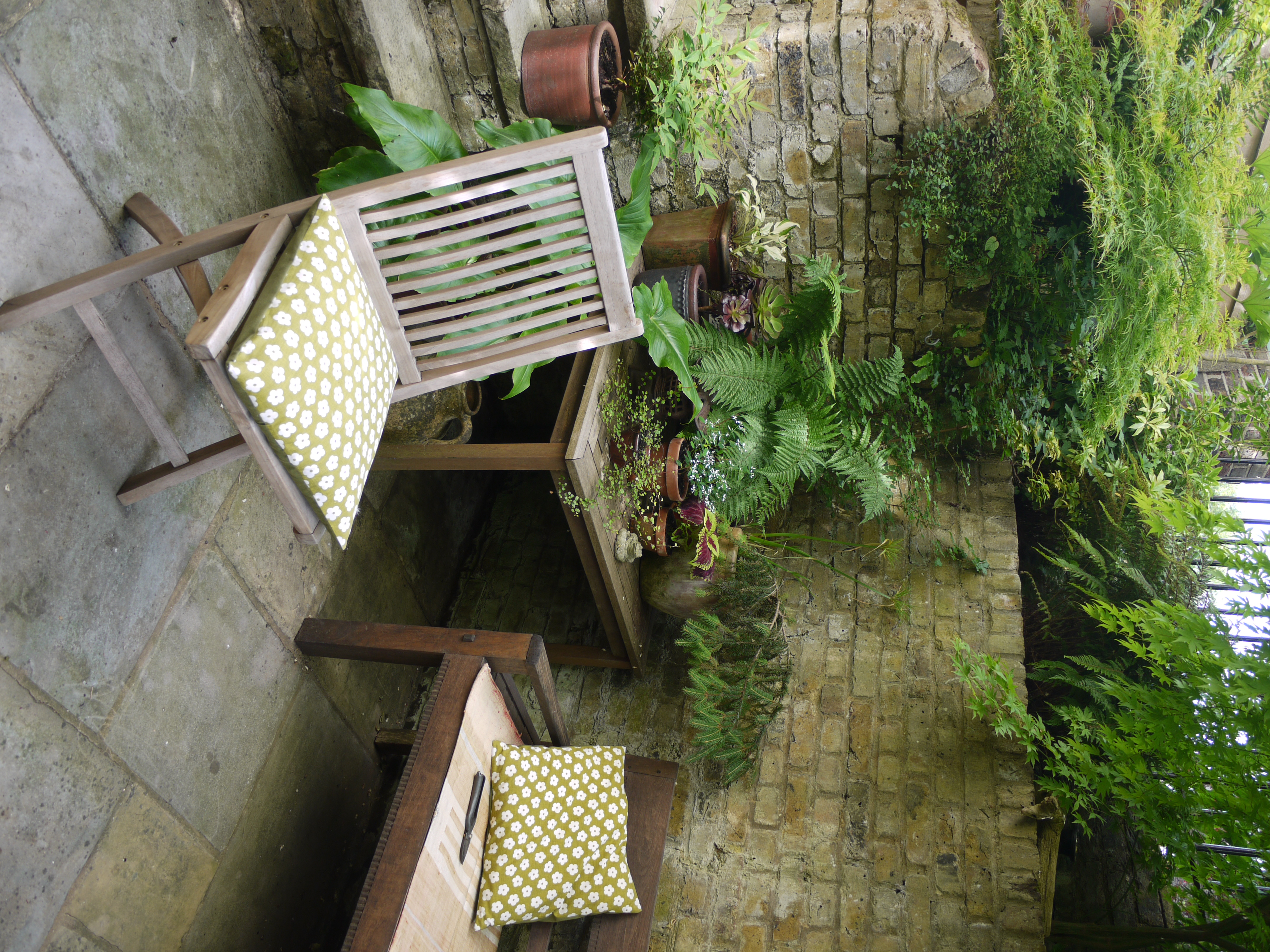 Fran's Back Garden
