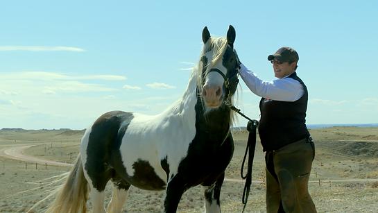 HoofMedix Karina Lewis with horse