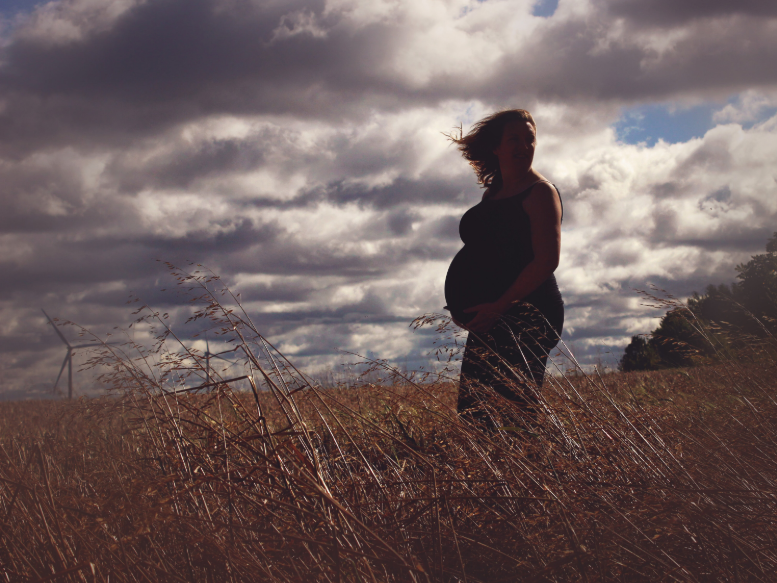 Cornfield maternity shoot