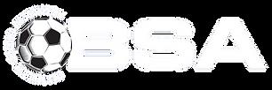 BSA Small Logo