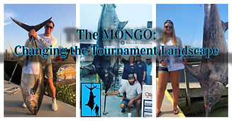 The Mongo Challenge.jpg