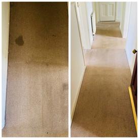 Carpet stain gone