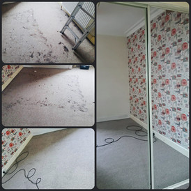 Carpet cleaning at its finest!