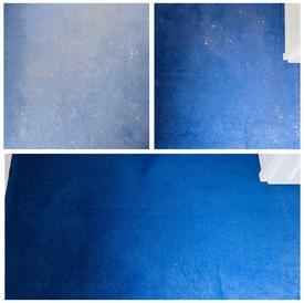 Carpet miracle
