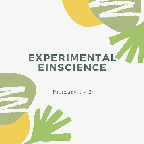 5-Day Experimental Einscience 11am - 1pm