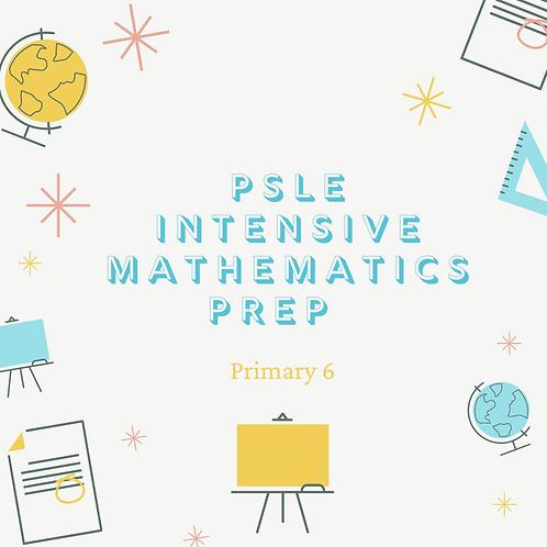 5-Day PSLE Intensive Mathematics Prep 11am - 1pm