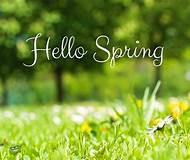 Spring Check (Winnipeg Auto Repair)