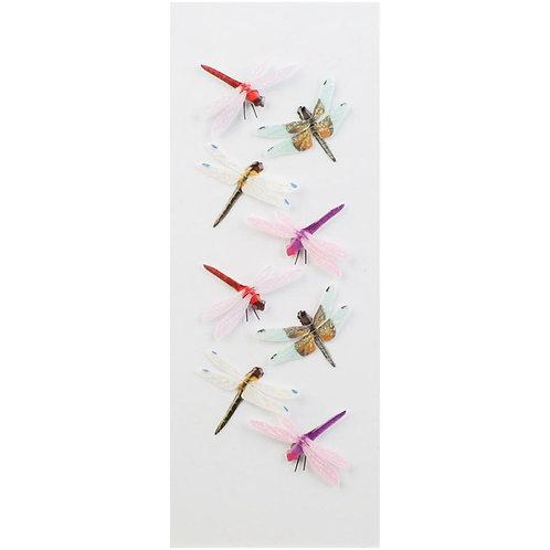 Little B - Dragonflies