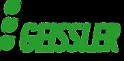 FahrschuleGeissler_Logo_RZ110313_4c.png
