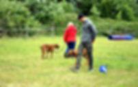 Hundeschule Altenholz