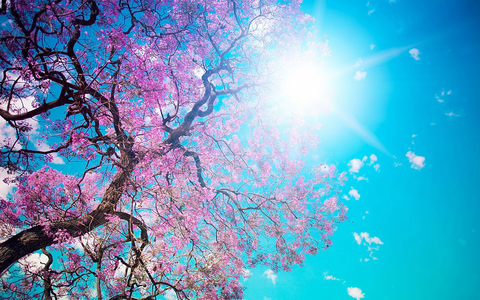 Lente-achtergronden-lente-wallpapers-len