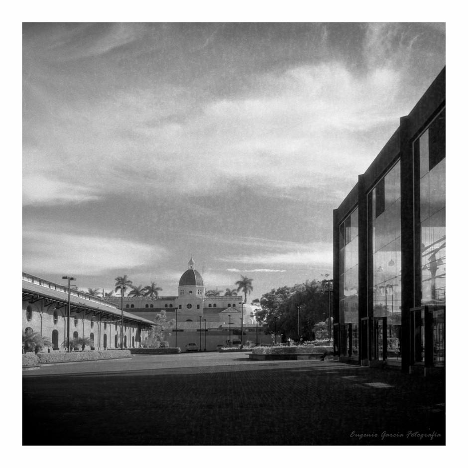 La foto prohibida. San José, 2016