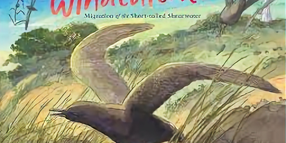 Launch: Windcatcher by Diane Jackson Hill, illustrated by Craig Smith