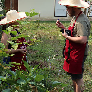 Bees Garden Cooking School Chiang Mai