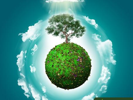 O meio ambiente e uma nova visão para o futuro