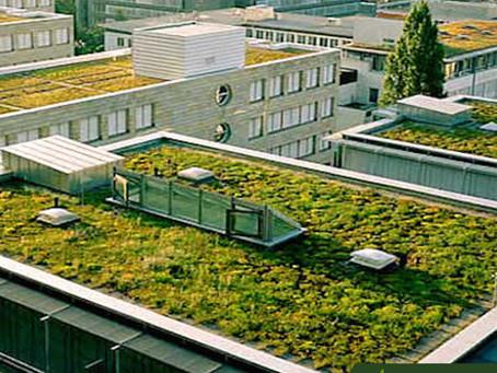 Um projeto sustentável e com qualidade de vida!