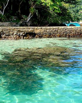 Ilha da Pescaria_002.png