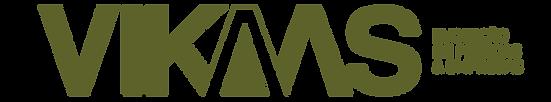 CV-VIKAAS-01.png