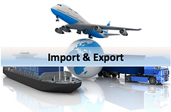 Tina agency guinea import and export.png