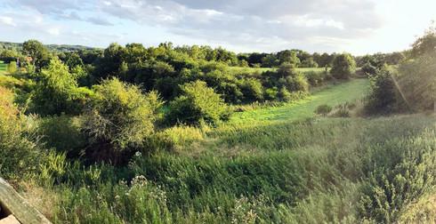Zone naturelle - sablière