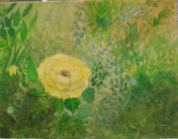 Lil Ole Yellow Rose SOLD